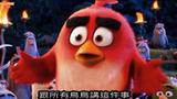 4分钟看完《愤怒的小鸟》