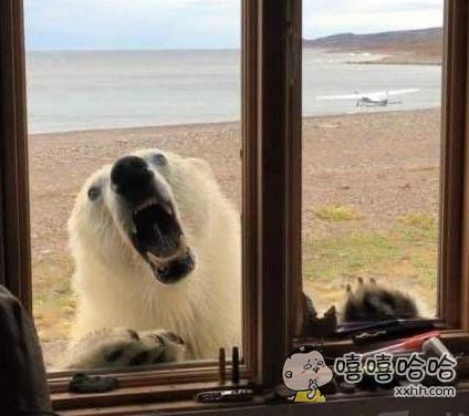 你有本事装逼玩,你有本事开窗啊。
