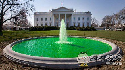 绿汁之源,这可能就是里约跳水馆里的水的来源