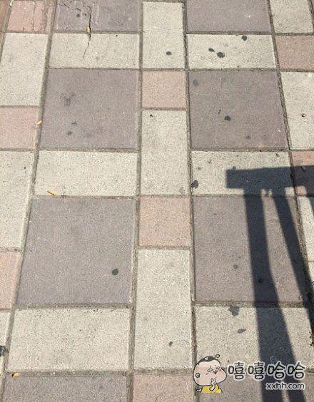 在路上走着走着,这地砖仿佛在暗示我要买一盘新的l眼影。。。