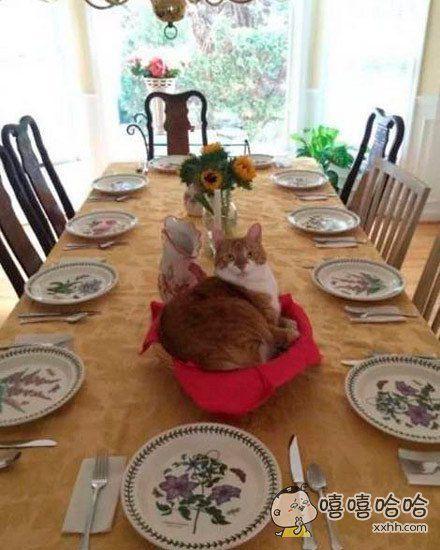 今天的晚餐