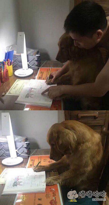 玛德,又让我替你写作业