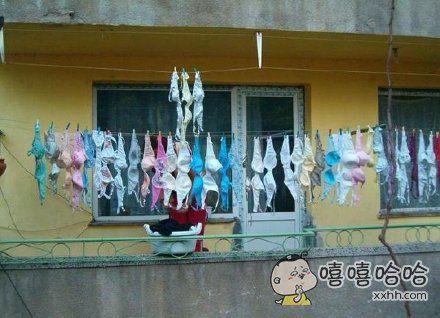 包租婆之阳台
