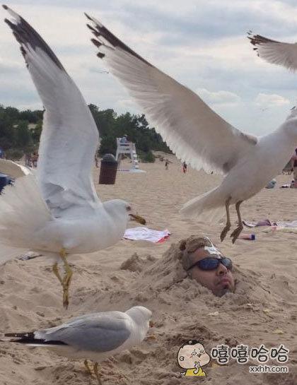 每个在沙滩上被埋起来的人都应该注意…