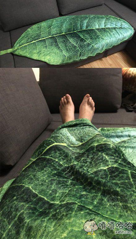 刚买的毯子……