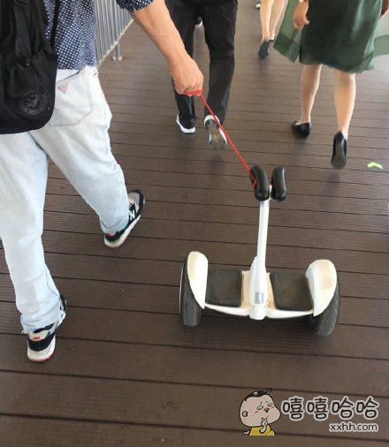 平衡车新玩法:当狗来溜