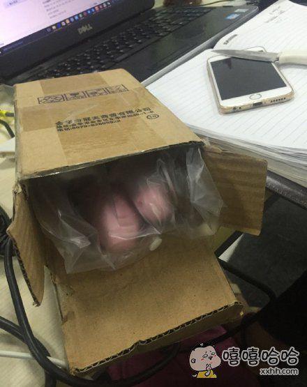 同事买了个跳绳……