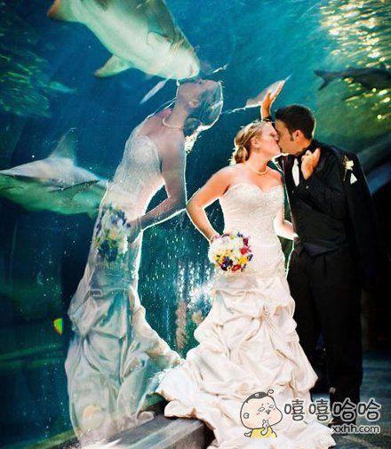 一对夫妻去海洋馆拍婚纱照,拿到照片的时候却发现照片上出现了诡异的东西。。。。。。