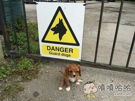 别说没警告你们啊!我发起脾气来自己都害怕!