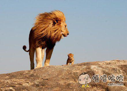孩子你看,这是爸爸的江山
