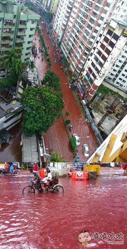 孟加拉首都的牺牲节,宰牛宰羊献祭赶上大雨。。。就算整座城市颠倒我会给你羊腰