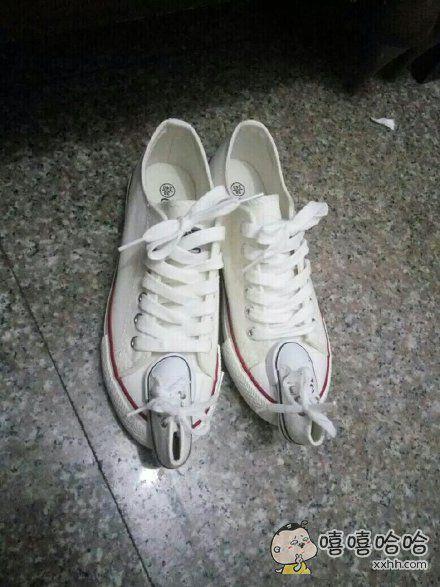 这鞋子某宝卖的挺火嘛