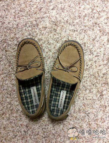 穿鞋的时候看到这一幕,有点不敢伸脚了