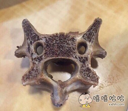 羊蝎子是很可爱的食物呀~~~就算被烫就算被啃也要保持微笑呀~~~