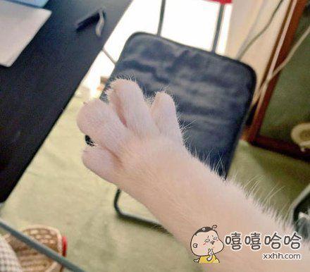 新做的指甲,夸我美!