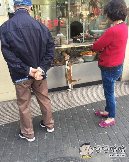 """买熟食的阿喵:""""要这个这个还有那个"""""""