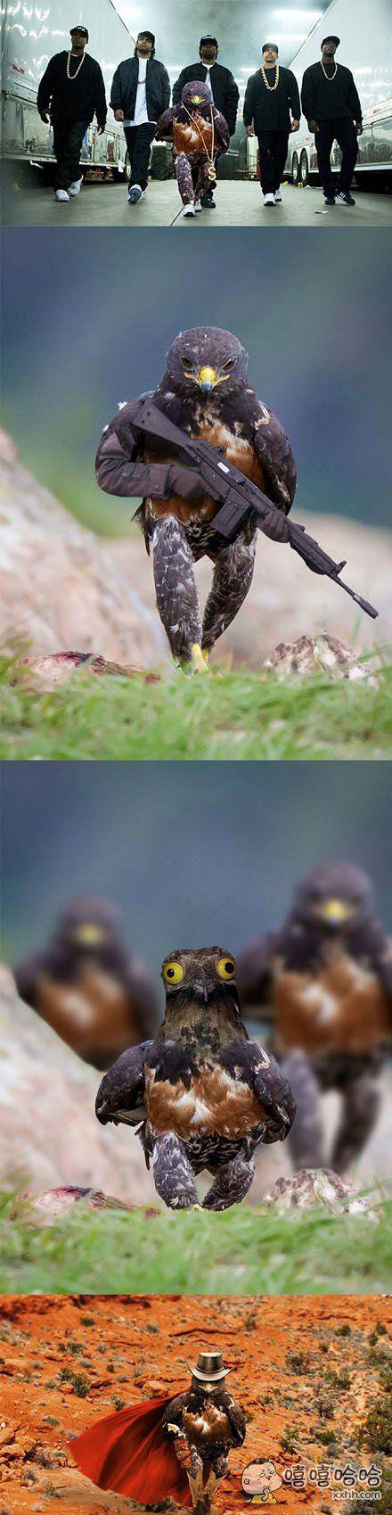 一个直立行走的鹰,又引起了歪果朋友的P图大战