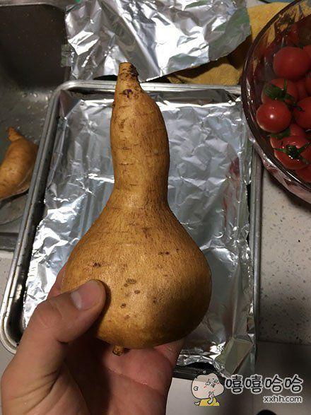 不想当葫芦的红薯不是好地瓜