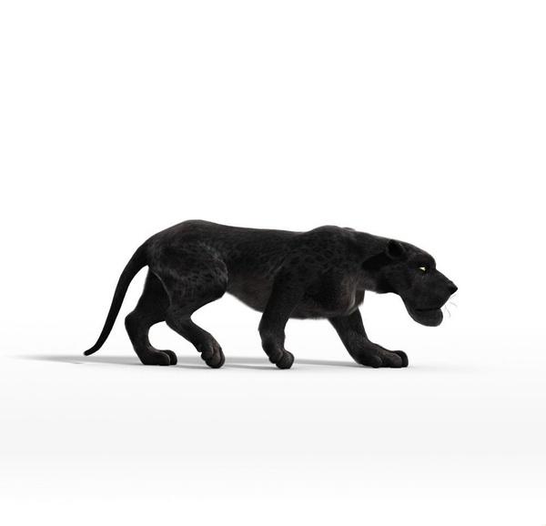 【动物总动员】演员表_上映时间_剧情介绍_预告片