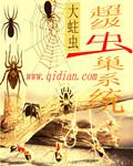 超级虫巢系统