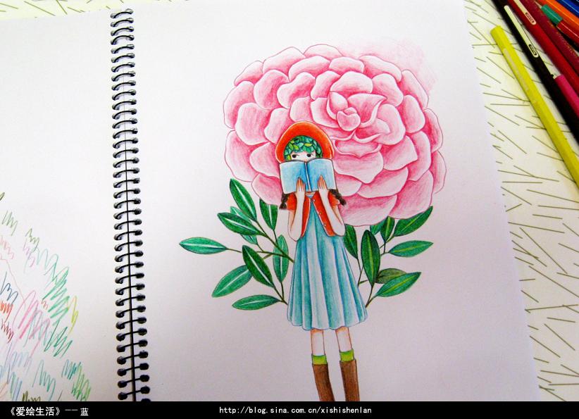 插画手绘彩铅花朵