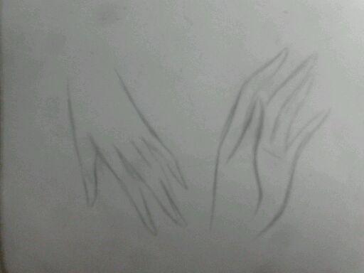 素描鸭子的画法步骤图