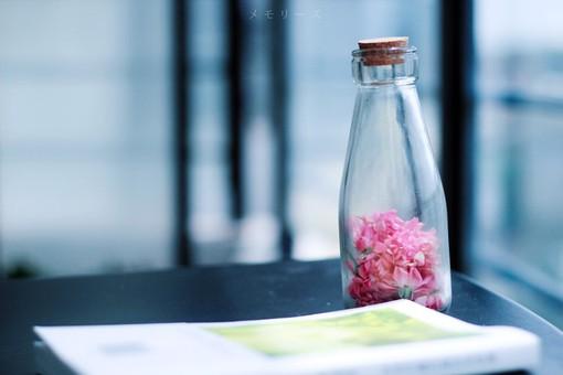 聊天壁纸风景高清瓶子