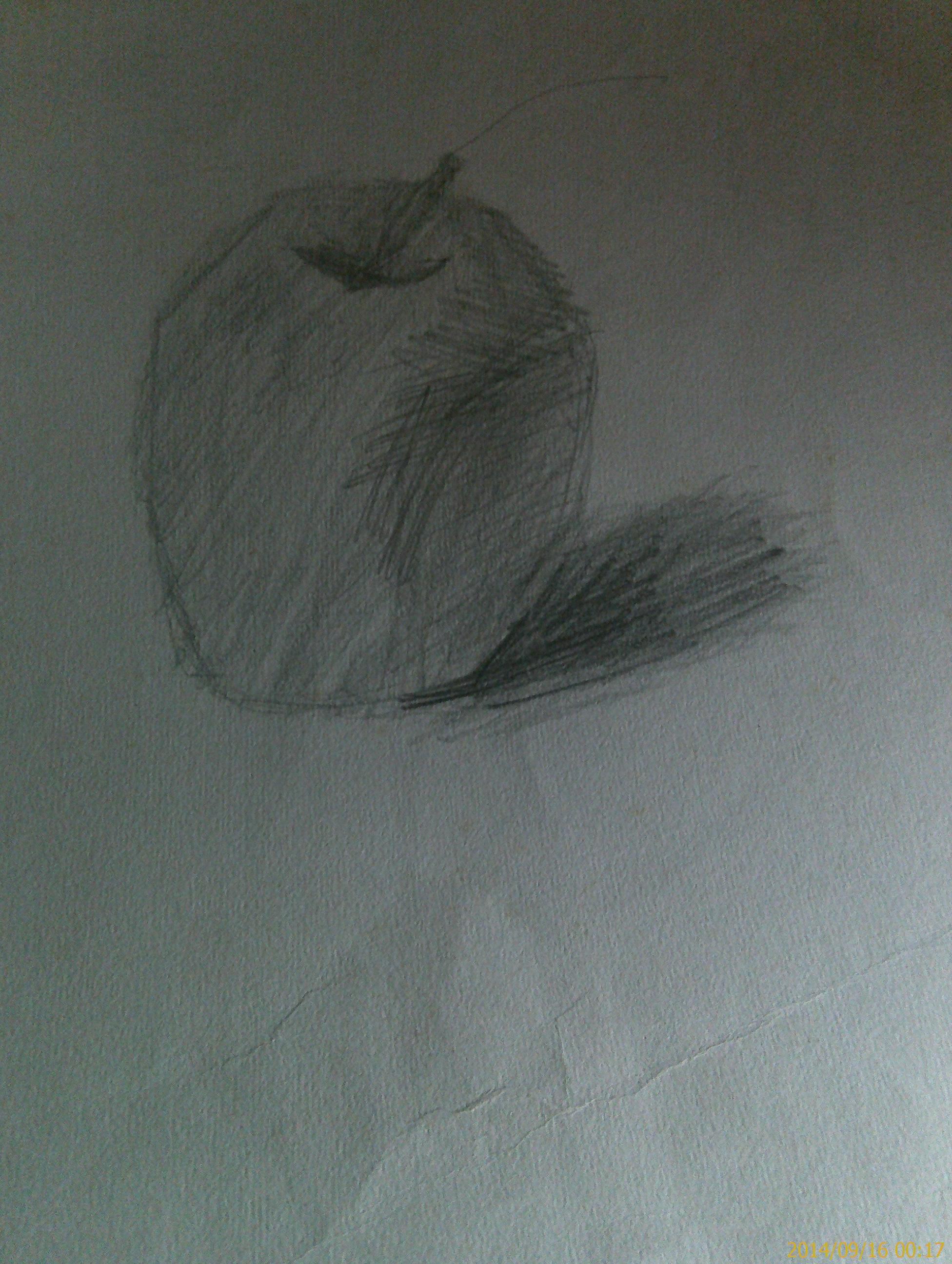 苹果素描图片基础步骤