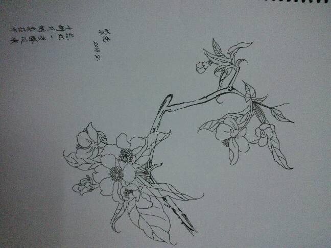 【p社-瓶子】手绘图楼.多古风.勿喷