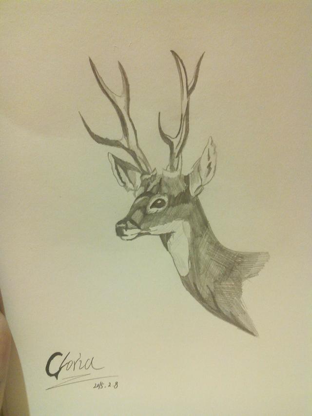 铅笔画简单可爱鹿