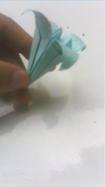 】纸折百合花教程