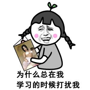 [金馆长]论表情包的重要性图片